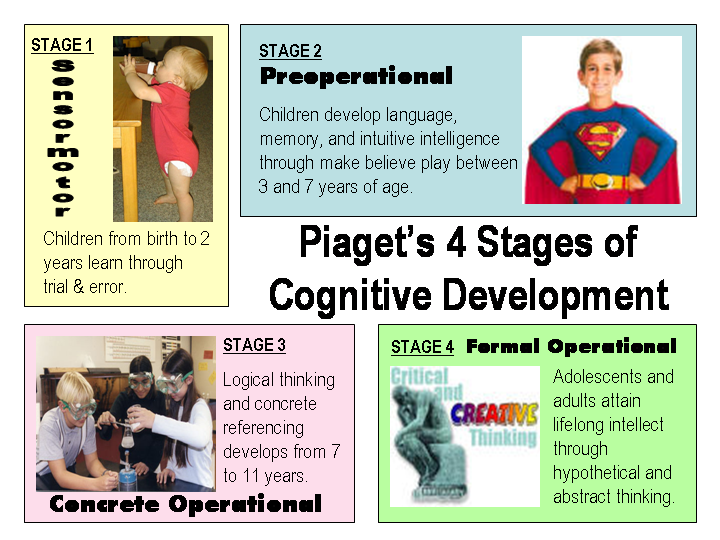 cognitive-development-in-adults